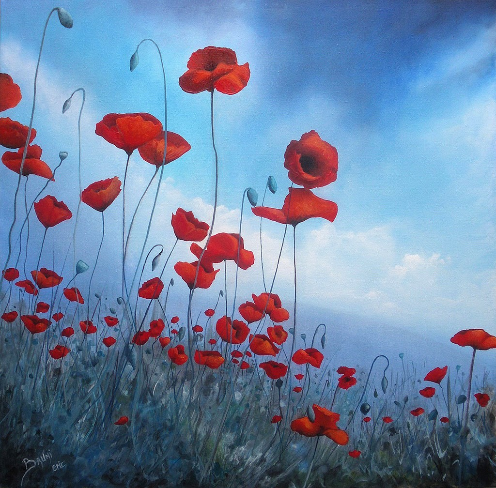 Poppies - Copyright Bruni Eric